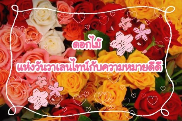 ดอกไม้ แห่งวันวาเลนไทน์ กับความหมายดีดี
